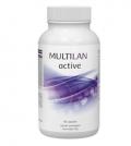 Multilan Active